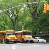 улицы NY пестрят желтизной - желтые здесь не олько такси