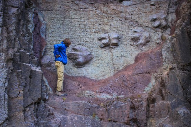 dinosaur footprints in Peru
